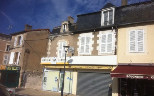 Townhouse / business for sale in France