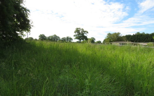Building plot for sale in Montmorillon France Reference : 70505