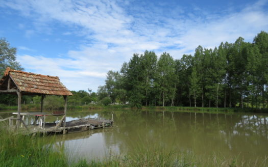 Lake for sale near Montmorillon France Reference : 70503