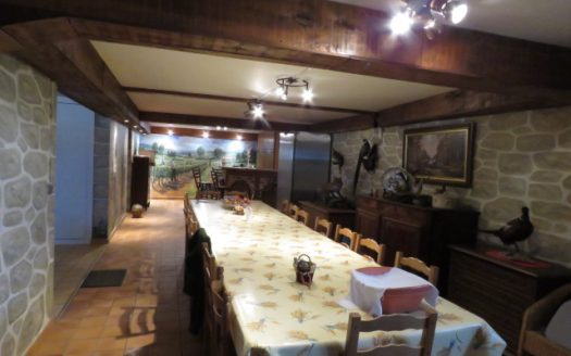 Modern village house for sale near Montmorillon France Reference : 71103